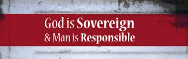 Sovereignty and free will